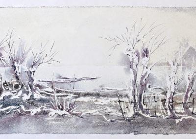Alberi spogli sul lago