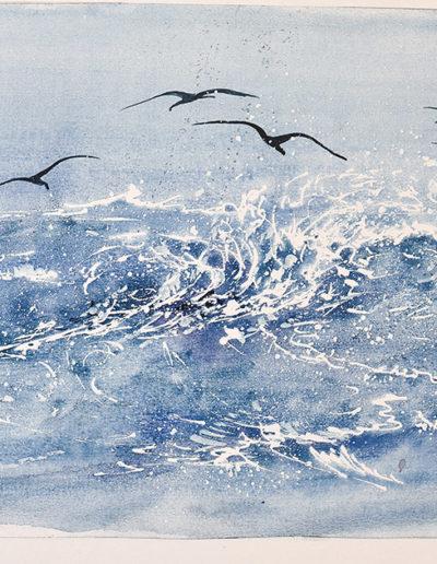 Cormorani sulle onde
