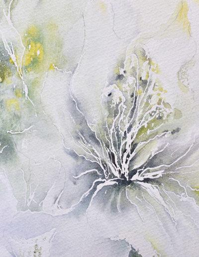Fiore bianco, dettaglio
